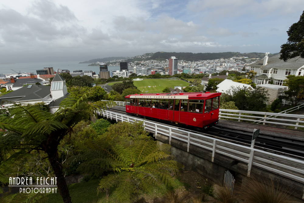 Wellington - Cable Car in die Stadt
